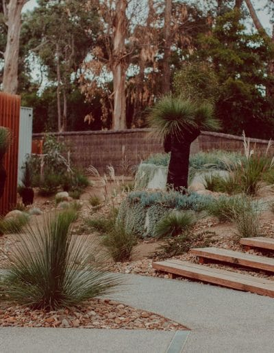 Photo of natural landscaping with Australian native plants and timber steps