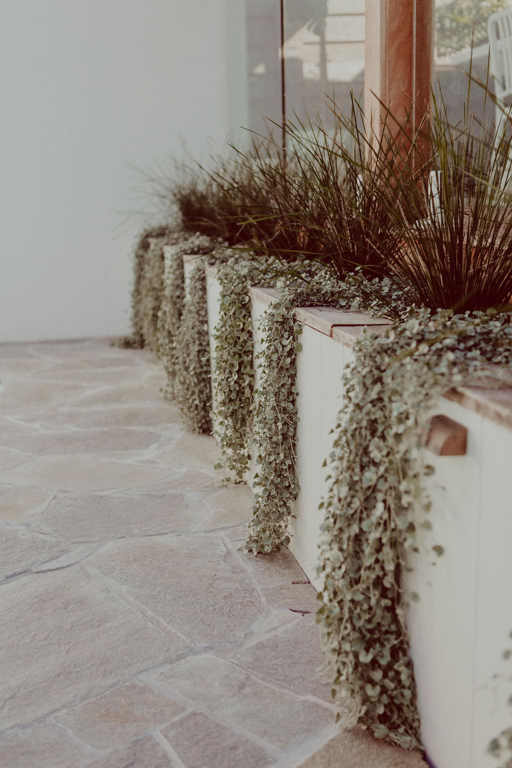 Photo of retaining wall with cascading creeper plant and crazy paving